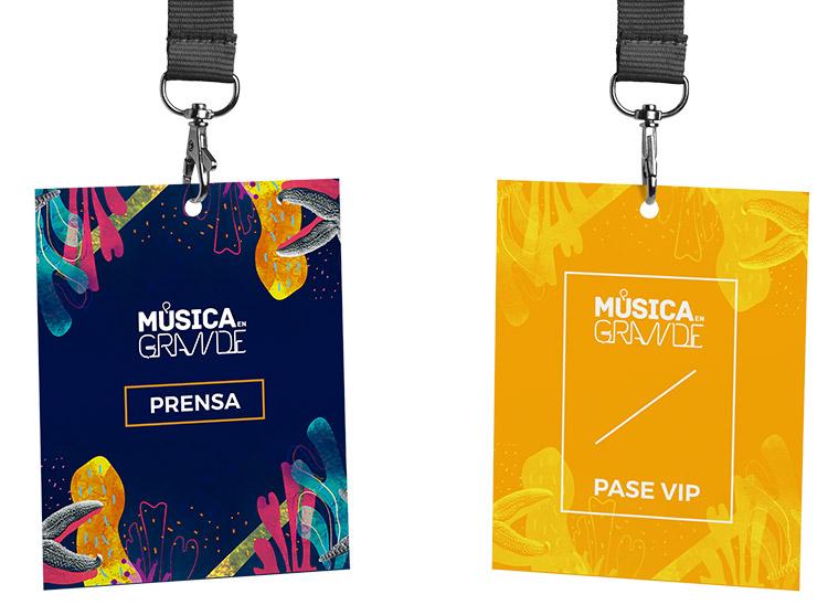 Festival Música en Grande 2017